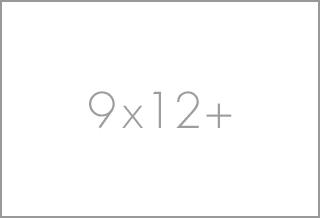 9x12+ rugs